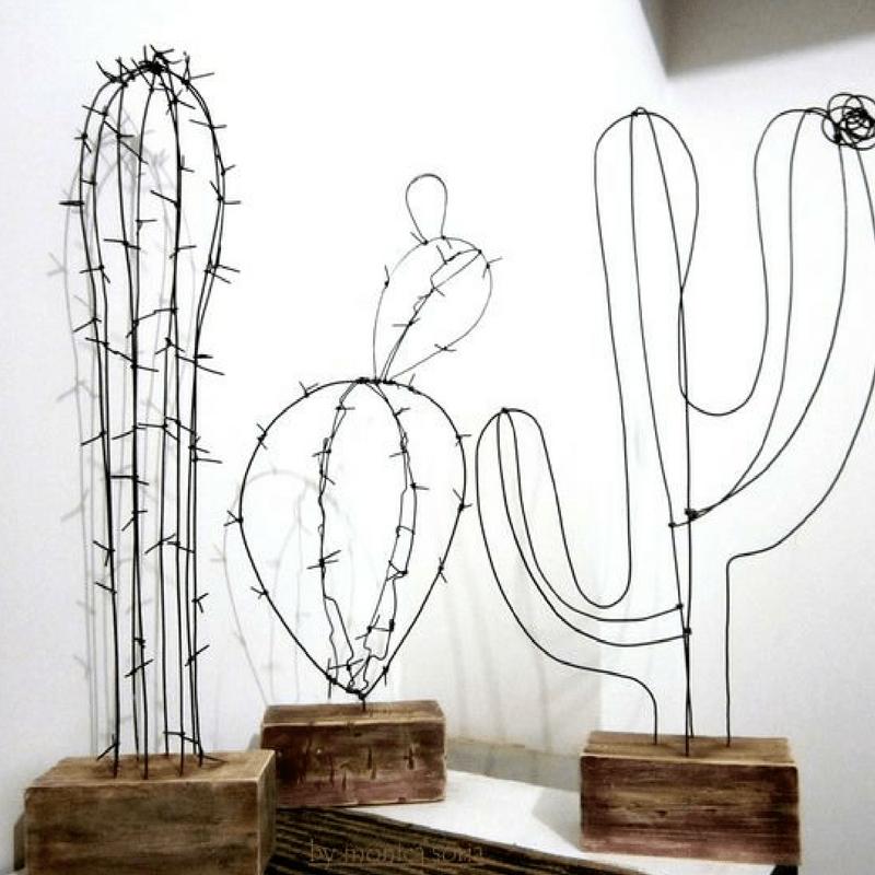 Imagen cactus decoración