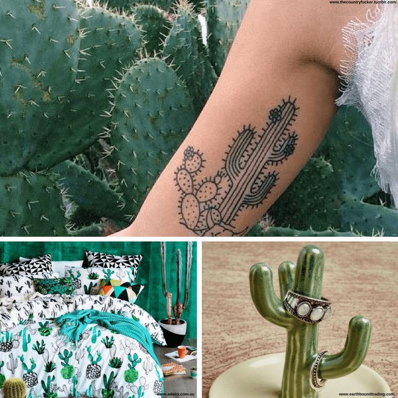 Diferentes imágenes de cactus: un tatuaje, una habitación, complemento para joyas.