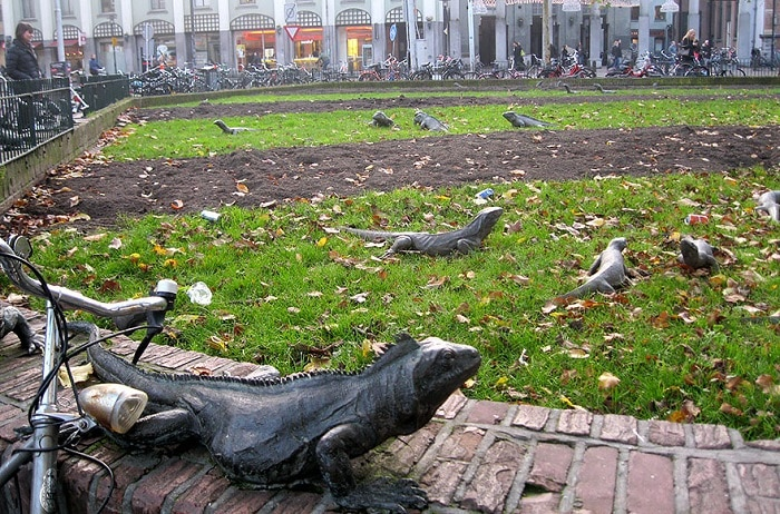 In Amsterdam Park, there are sculptures of forged iguanas crawling along the fences and among flower beds.