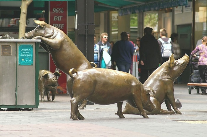 In the center of the city were mounted sculptures of pigs in the final stage of the modernization of the street.