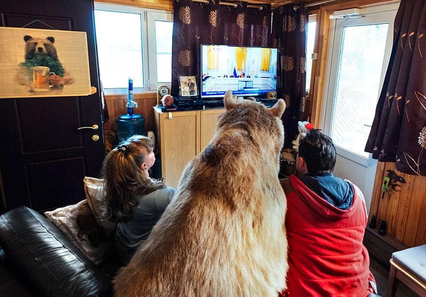приняла медведица-русский-семья-Stepan-A18
