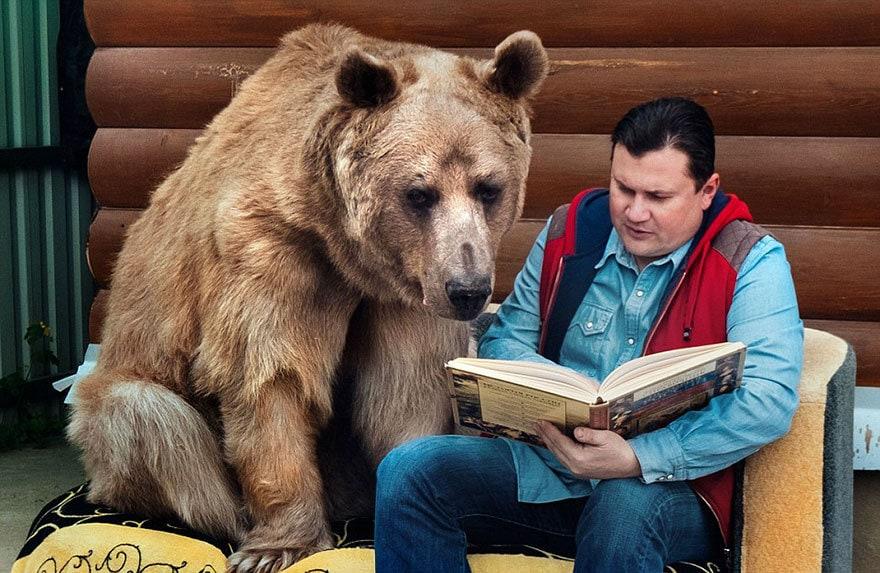 приняла медведица-русский-семья-Stepan-a2
