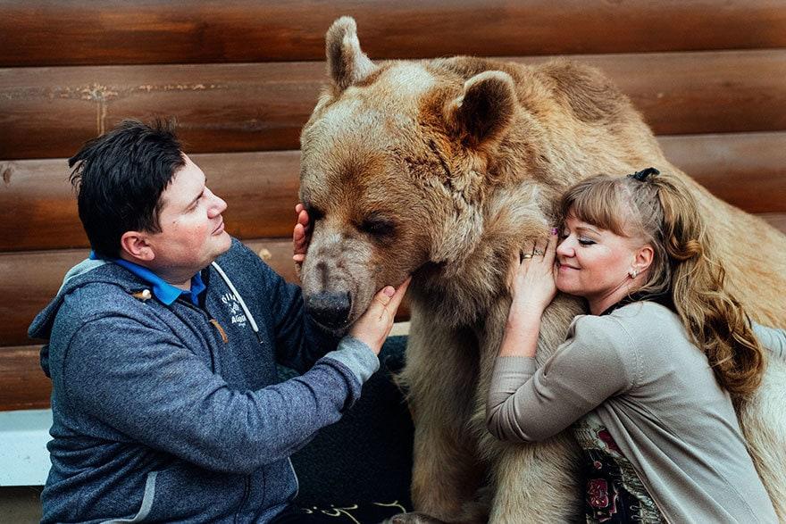 приняла медведица-русский-семья-Stepan-a4