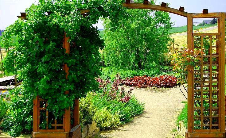Ландшафт в цветах: зеленый, белый, бордовый, темно-зеленый, салатовый. Ландшафт в .