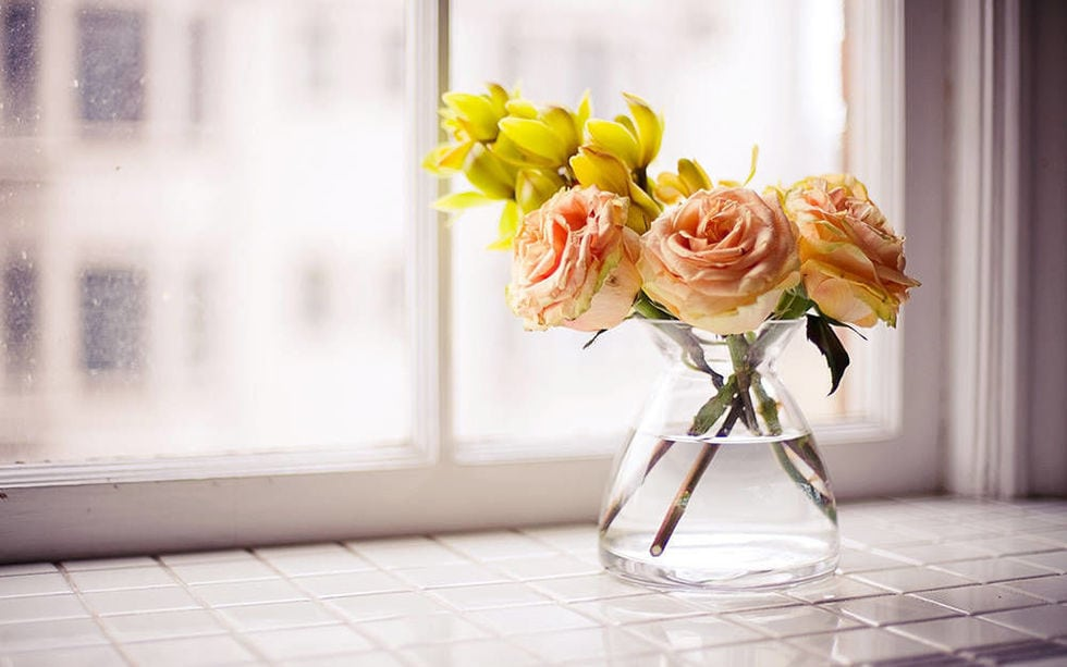 Как добиться того, чтобы цветы стояли дольше: 13 советов