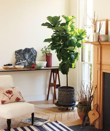 Photo: Floristics in style, Interior decor, Decor, Tips - photos on InMyRoom.ru