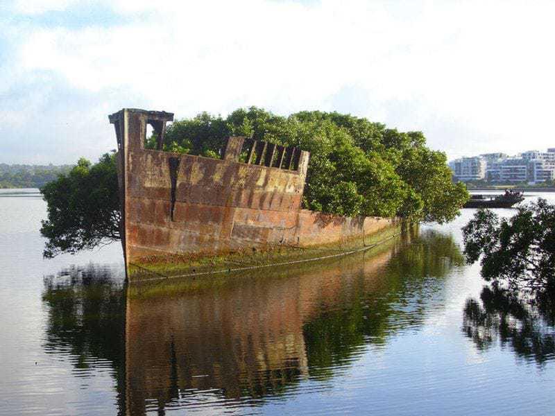 11. 102-летний заброшенный корабль в Австралии.
