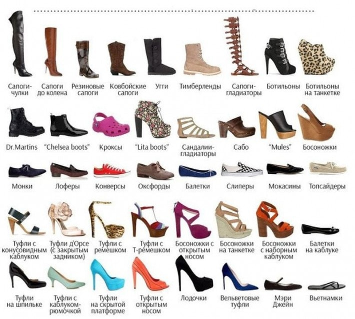 division and classification shoes