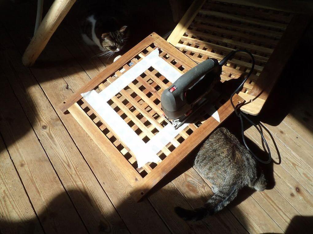 Кот и электролобзик 3