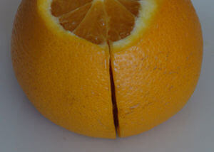 Notched Orange 3