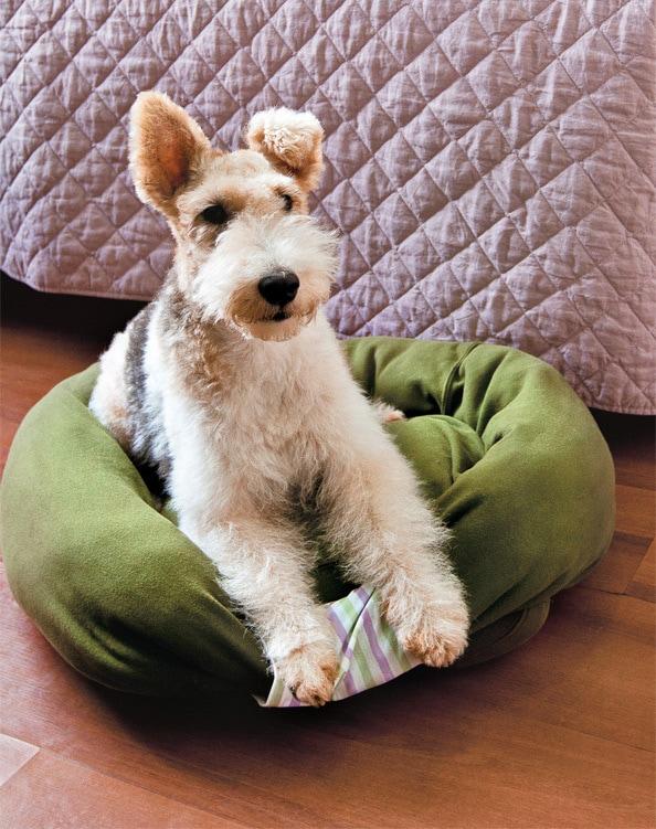 подстилка из свитера для собаки
