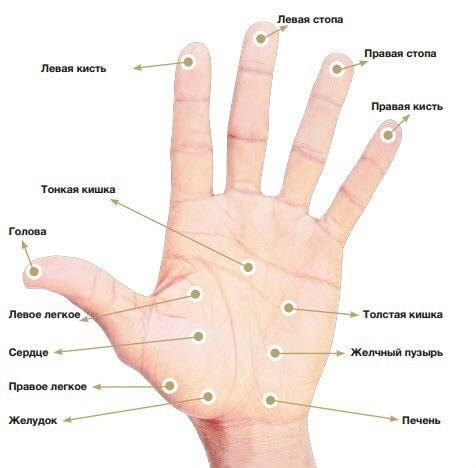 Линия сексуальности на руке