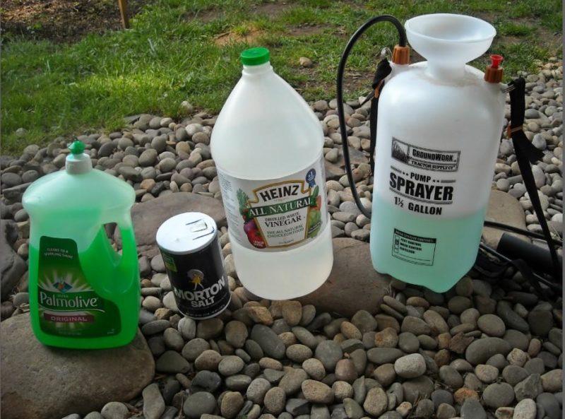 средство для мытья посуды против сорняков