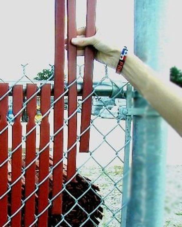 Как украсить забор из сетки рабицы на даче своими руками 9