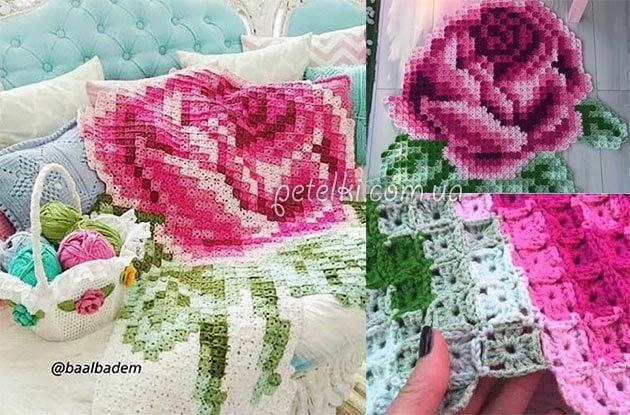 цветки комнатные фото название и уход за ними