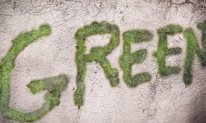 надпись на стене мхом