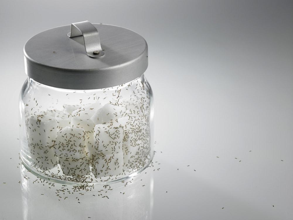 Сода: 50 необычных способов применения. На заметку хозяюшкам!