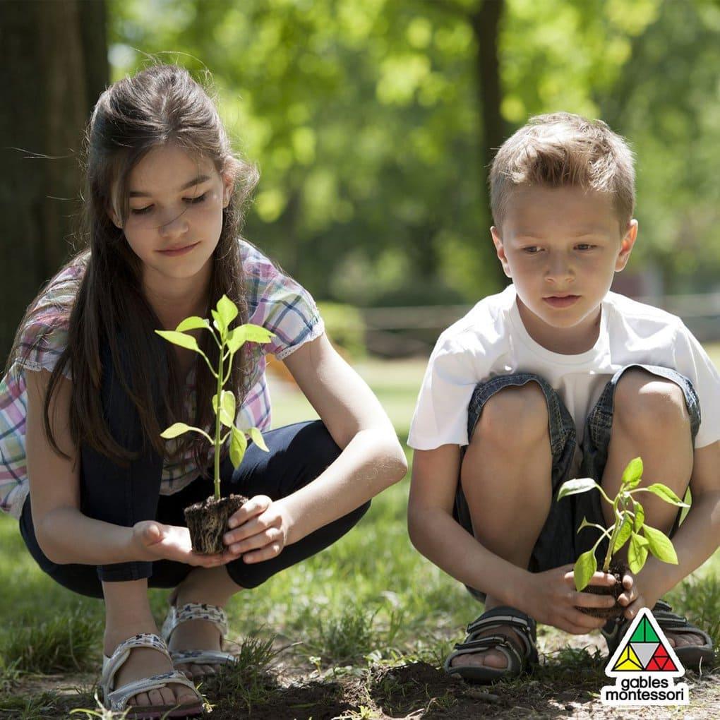 дети сажают дерево