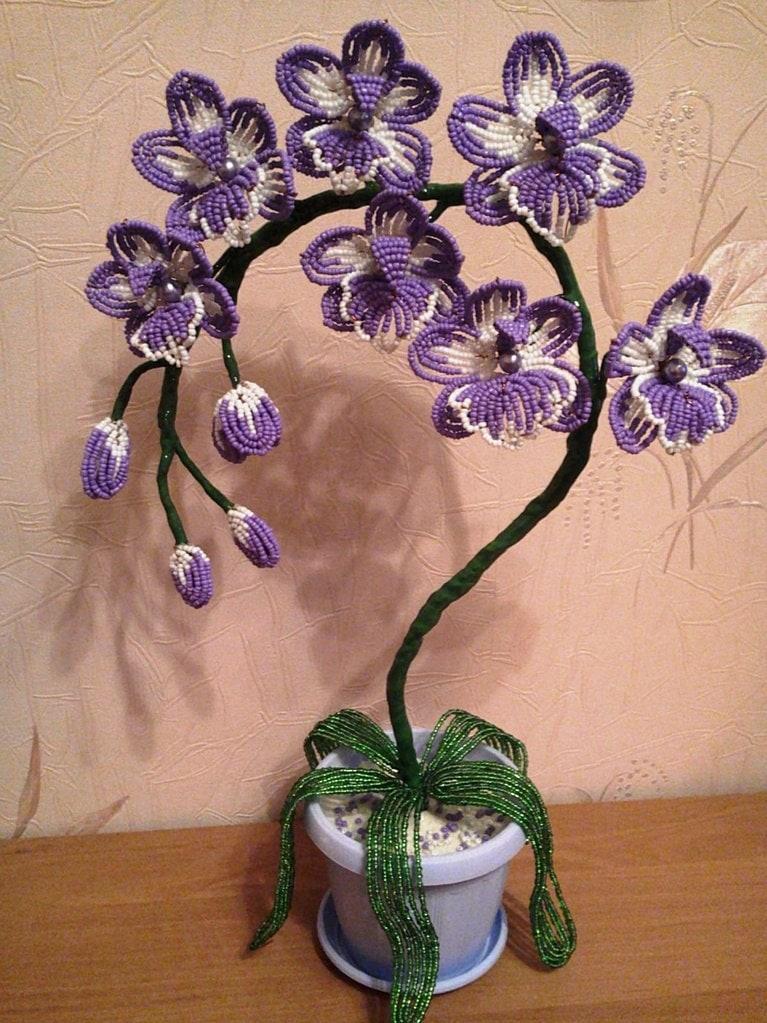 популярный транспорт, плетение орхидеи синей из бисера пошаговые фото снималась довольно