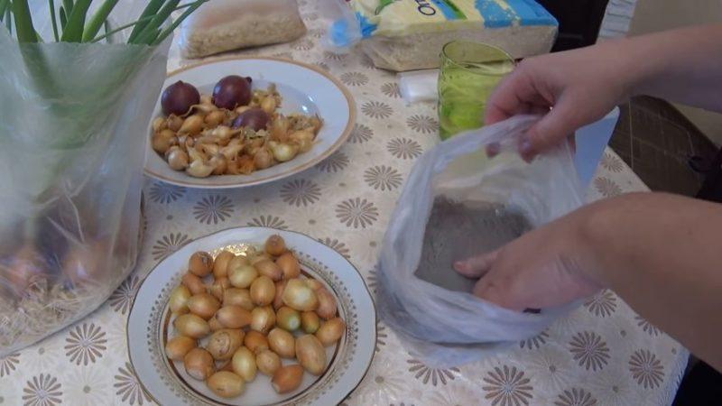 Гениальный способ выращивания зелёного лука дома без земли и горшка
