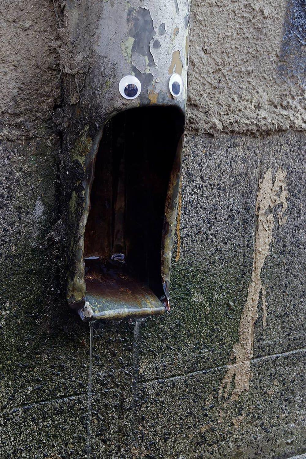 водосточная труба с приделанными глазами