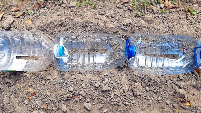 Собирайте 5-литровые пластиковые бутылки и оформите красоту на участке